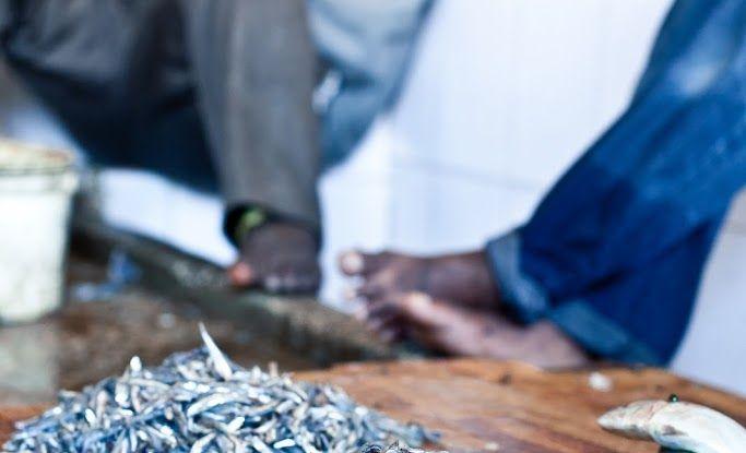 Tanzania, Exploring Stone Town : Day 14